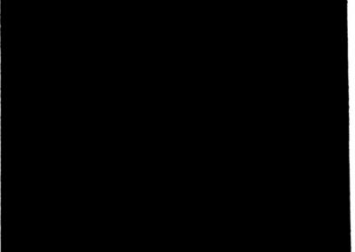pettal 11 black